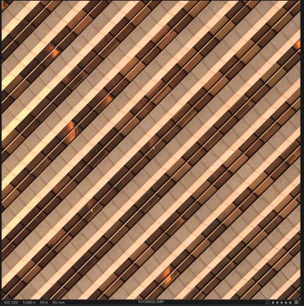 Screen Shot 2017-07-09 at 7.42.48 AM
